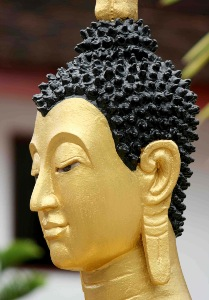 Greeting Card | Buddhist Themed | Freshly Painted Buddha | #14 of 20