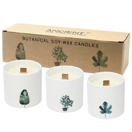 Pack of 3 Botanical Candles - Large sized | Victorian Peony Fragrance
