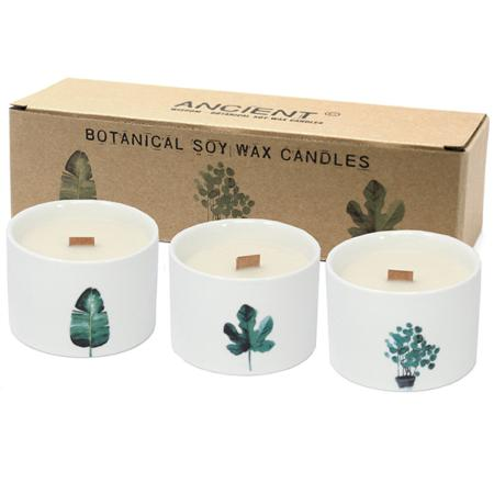 Pack of 3 Botanical Candles - Medium sized | Japanese Garden Fragrance