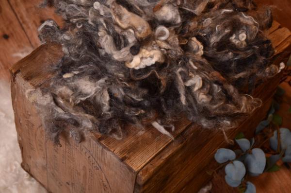 Dark grey natural virgin wool