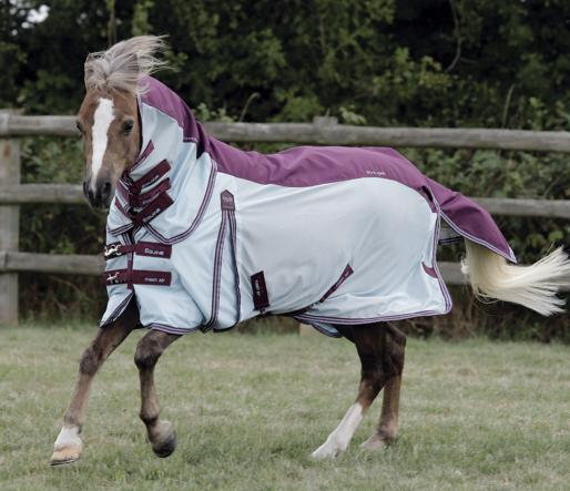 Pony Stay-Dry Mesh Air Fly Rug with Surcingles